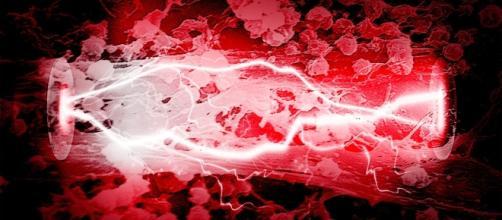Microbial Fuel Cell on Flipboard - flipboard.com