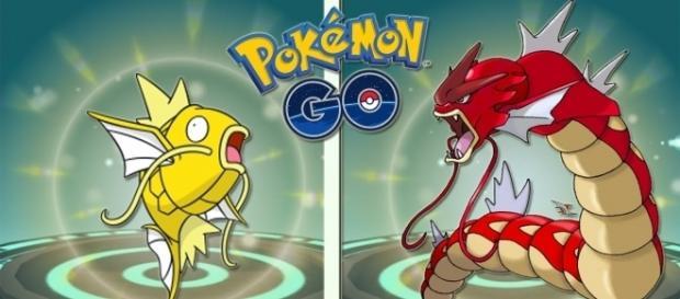 """""""Pokemon Go"""" Shiny Pokemon Caught, Another Ditto Case? (Keibron Gamer/YouTube)"""