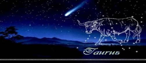 Taurus Zodiac Sign Wallpaper- WallpaperSafari – wallpapersafari.net