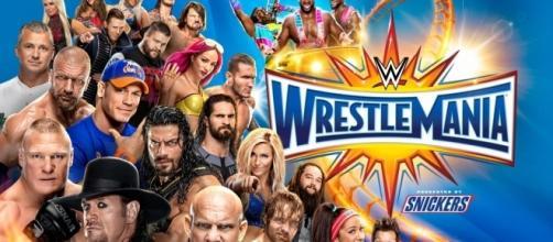 WrestleMania 33 courtesy of the WWE