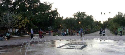 La ciudad conserva y disfruta de la resolana bajo sus jardines botánicos.
