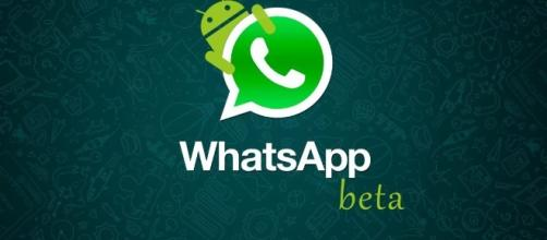 Nova versão do WhatsApp tem gerado críticas dos usuários