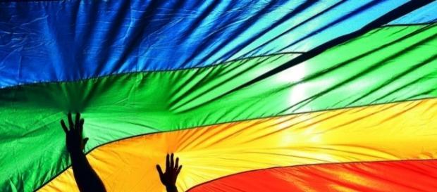 Bandeira celebra a diversidade de gênero.