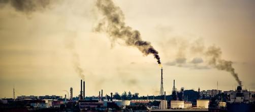 Inquinamento da piombo e sue conseguenze. Come ridurre l'esposizione e disintossicare l'organismo con rimedi naturali vitocausarano.it