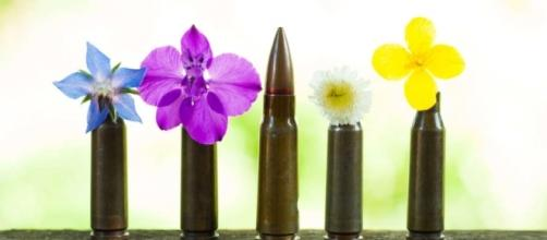 The U.S. army wants to create biodegradable bullets that grow ... - getcollagen