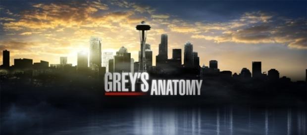 Grey's Anatomy tv show logo image via Flickr.com