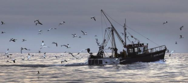 Owen Paterson: How we can reset our fisheries policy – and empower ... - politicshome.com