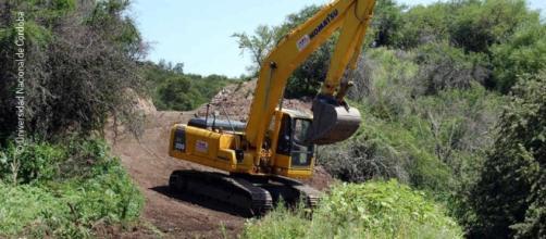 Desmonte de los bosques nativos de Córdoba