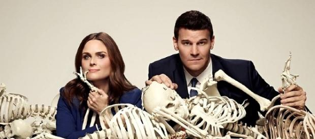 Bones Cast and Producers Talk About Possibilities of a Reunion - goshtv.net