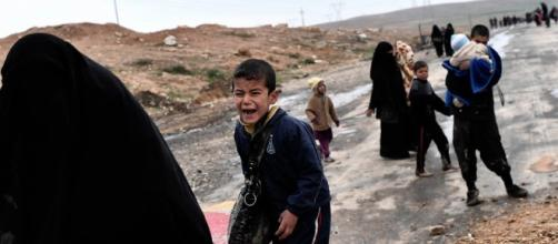 Red Cross says chemical weapons used near Mosul - breakingnewslive.net