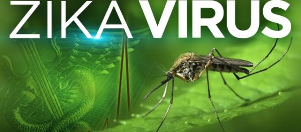 Zika Virus « CBS Pittsburgh - cbslocal.com