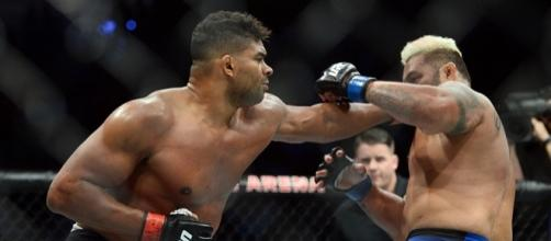 UFC 209: Alistair Overeem is victorious by knockout | photo credit - mmajunkie.com
