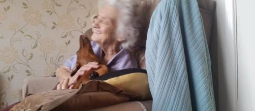 Cachorrinha é a alegria da idosa, que sofre de Alzheimer (Foto: reprodução/Twitter: Richard Dawson)