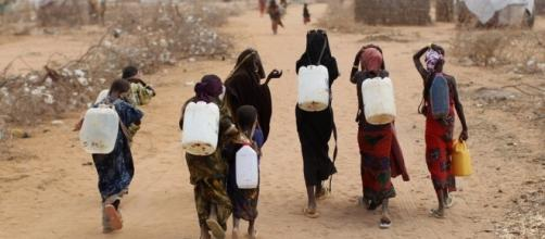 Famine Affects Millions In Horn Of Africa : NPR - npr.org