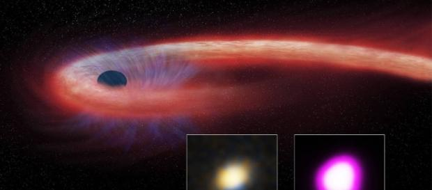 Destroyed Star Rains Onto Black Hole, Winds Blow It Back   NASA - nasa.gov