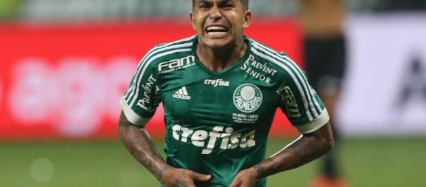 Tucuman x Palmeiras: ao vivo na TV