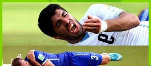 Suarez e Chiellini dopo il contatto - FOTO: Youtube