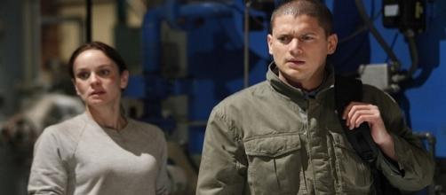 """Prison Break"": Michael e Sara Tancredi"