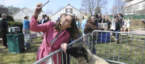 Coming Saturday: Easter egg hunt at Executive Mansion - Times Union - timesunion.com