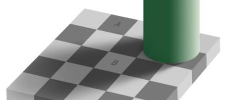Ilusão de optica de Edward Adelson