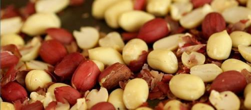 Além de ser um ótimo aliado na perda de peso, uso do amendoim pode ajudar na prevenção de problemas como obesidade e diabetes