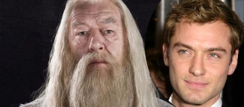 Jude Law interpretará a Dumbledore de joven - planoinformativo.com
