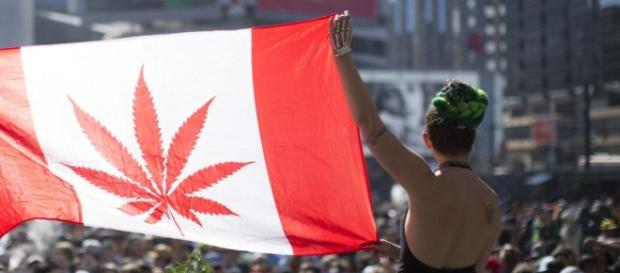 Canadian government has tabled bill to legalize marijuana / photo: BN Photo Library
