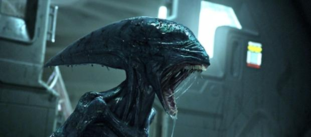 "Everything you need to know about ""Alien: Covenant"" - heroichollywood.com"