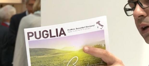 Vino pugliese, vitigno cileno: errore al Vinitaly