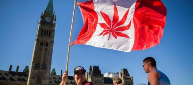 Canada looks to legalize recreational pot by July 2018 | The Japan ... - japantimes.co.jp