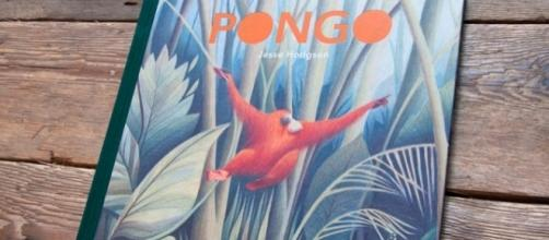 'Pongo' is a simple and beautifully illustrated story. / Photo via Tucker Stone, Nobrow. Used with permission.