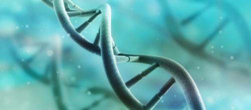 Gene Therapies for ALS Patients Focus of New Program at University ... - alsnewstoday.com