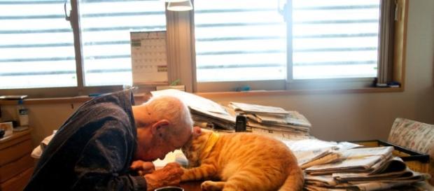 Veja a emocionante história de Jiji e seu gatinho