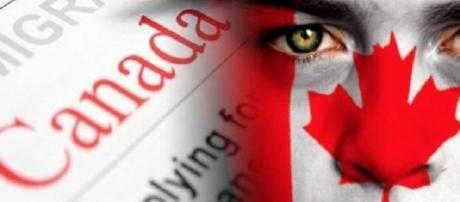 Profissionais brasileiros estão na mira do Canadá