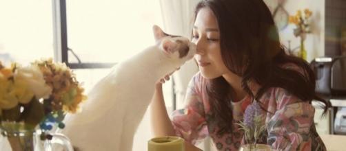 Voici comment votre chat vous prouve son amour