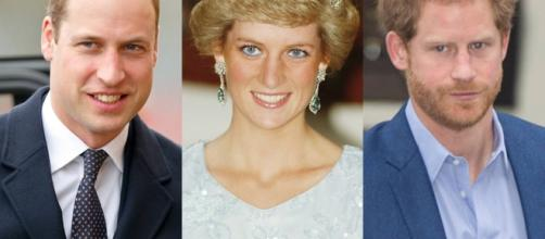 Two Decades After Princess Diana's Death, Why William and Harry ... - eonline.com