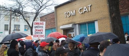 Immigration Inquiry Draws Protest at Tom Cat Bakery squib | New / Photo by squibs.org via Blasting News library