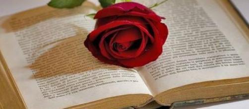 Durante la celebración del Día del Libro es tradición regalar libros y rosas.
