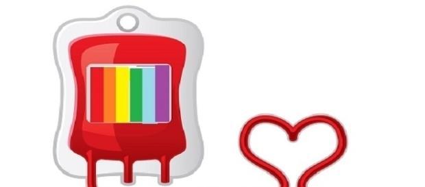 Jovem queria doar sangue e acabou descobrindo que sua bolsa seria descartada