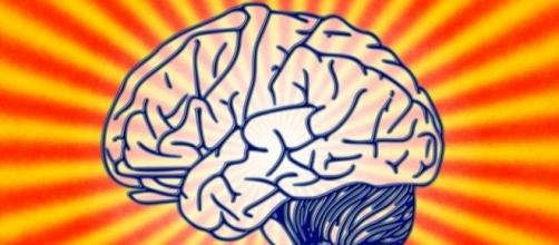 Anti-aging research is on a roll — Neurofantastic - neurofantastic.com