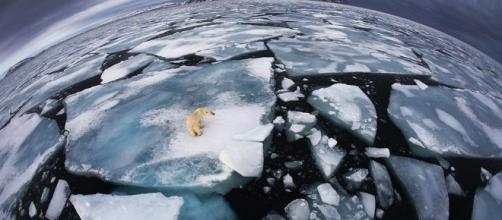 CMC 1ºD: El deshielo irreversible de la Antártida. - blogspot.com