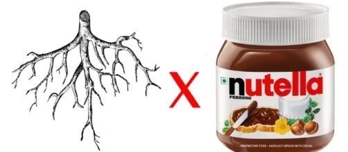 veja os melhores memes de Raiz x Nutella