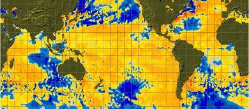 Wild claim: Climate change impacts on endangered wildlife ... - wattsupwiththat.com
