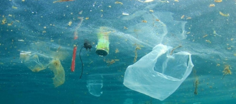 Mar adriatico una discarica di plastica a cielo aperto for Si puo fare il bagno con la febbre
