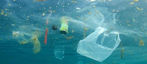 Tutti al mare, a fare il bagno in mezzo ai rifiuti | Diario Trend - diariodelweb.it
