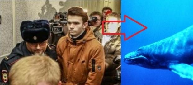 Suposto criador do Baleia Azul vai preso