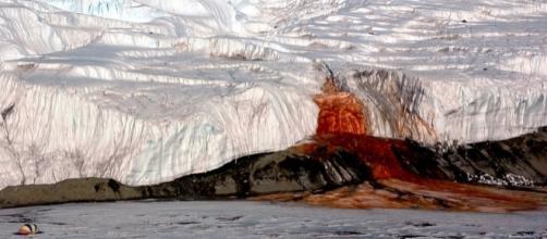 Il mistero delle cascate di sangue in Antartide: la scoperta impone nuove domande
