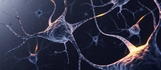 O cérebro consegue mesmo ouvir e sentir gifs animados
