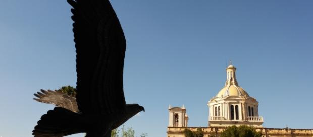 El Museo de las Aves en la capital de Coahuila, recuento y convivencia interdisciplinaria.