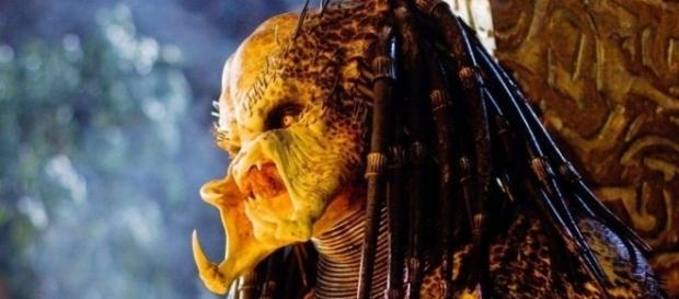 "Has ""The Predator"" Found Its Prey? - horrorfreaknews.com"